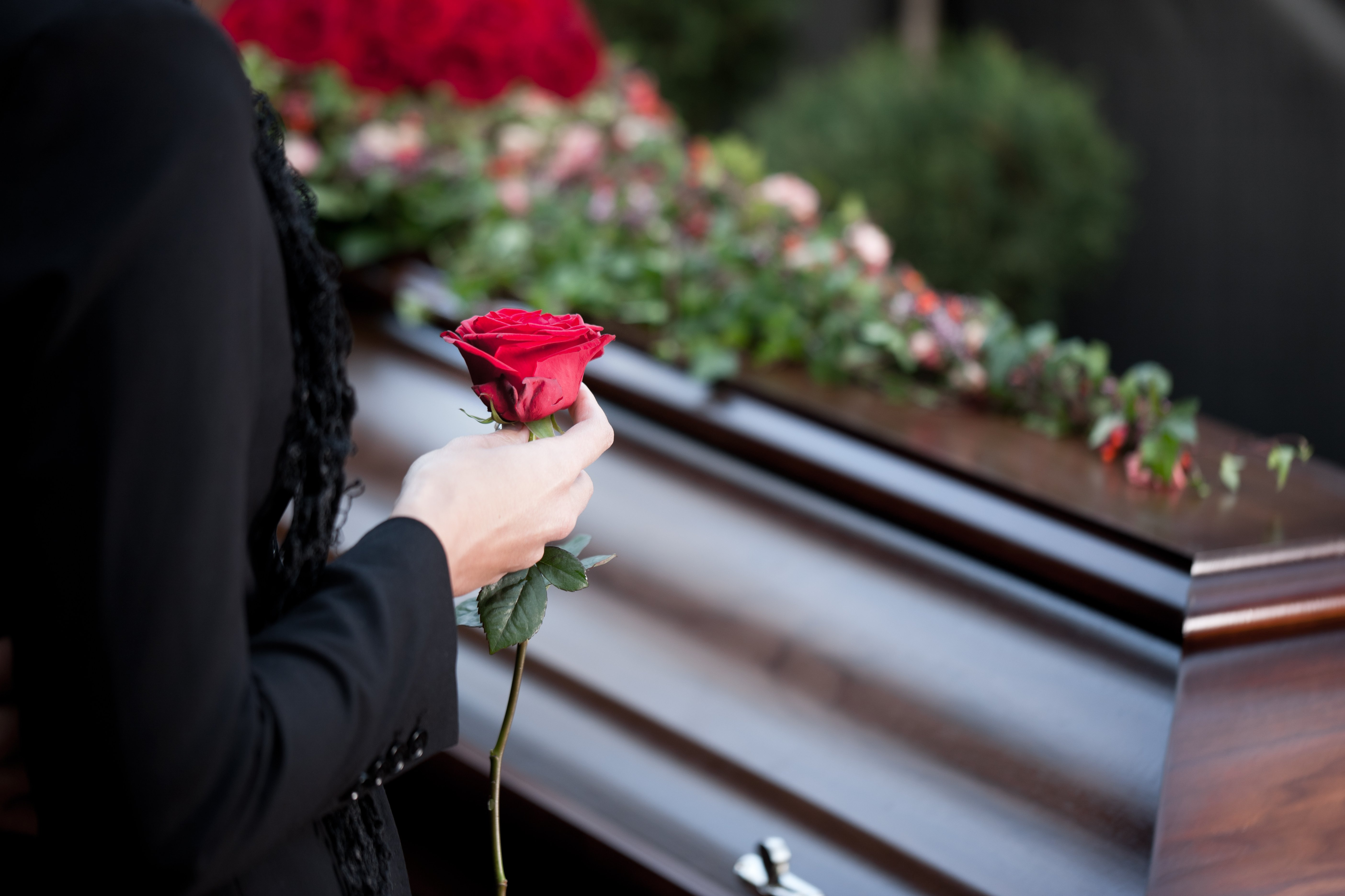 Individual holding a red rose in front of a coffin. | Source: Shutterstock