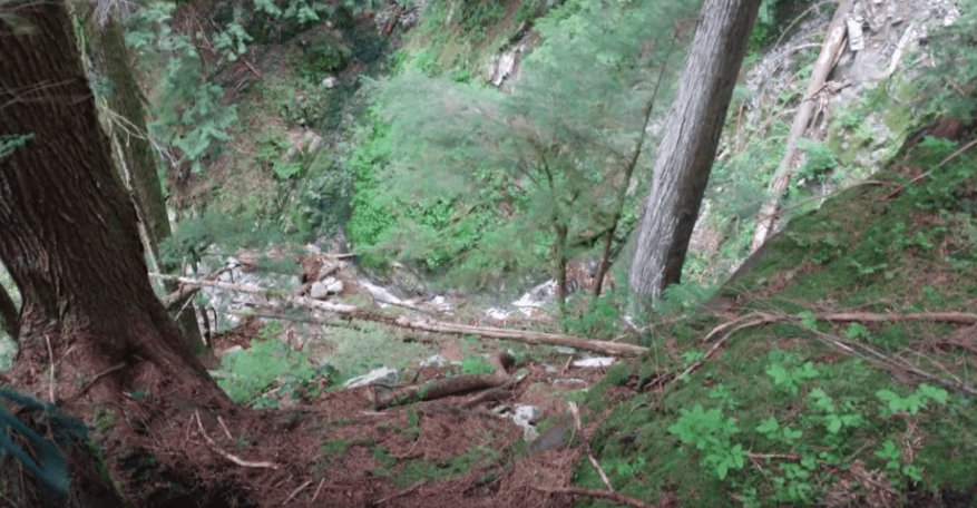 The cliff the family fell off from | Photo: CBC News: The National