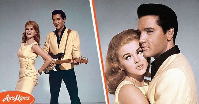 Pictures of Elvis Presley and Ann-Margret   Photo: Getty Images