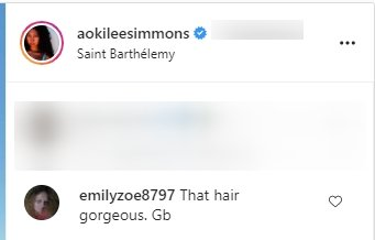 A fan's comment on Aoki Lee's recent picture in a blue dress. | Photo: Instagram/Aokileesimmons