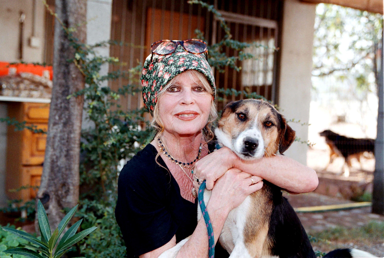 Brigitte Bardot avec son chien. l Source: Getty Images