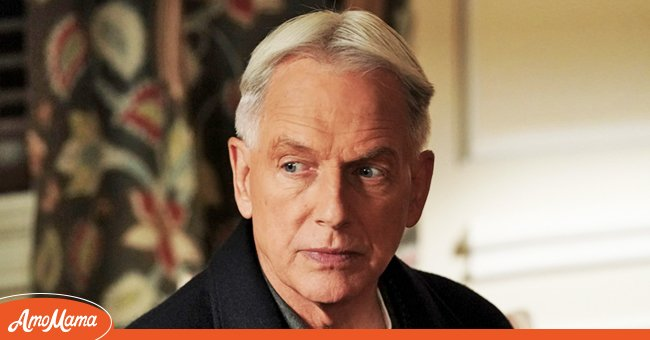 A picture actor Mark Harmon | Photo: Getty Images
