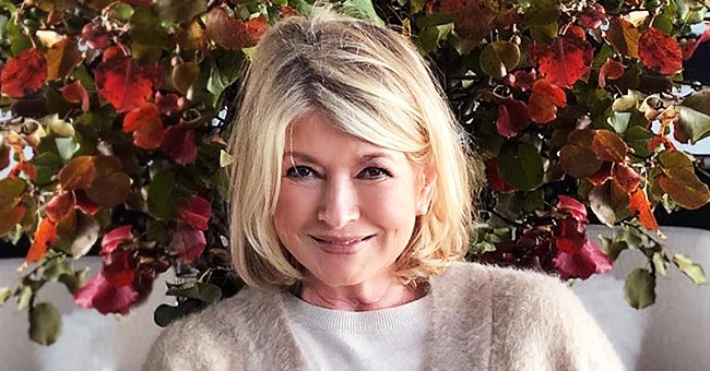 Martha Stewart Is Ready for the Holidays as She Debuts Her New Haircut in Photo