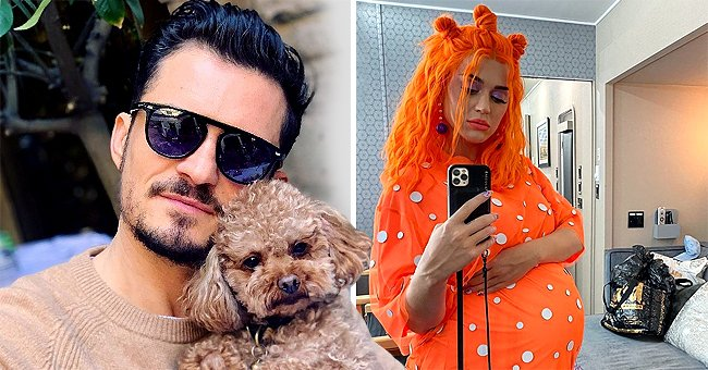 Mirror: Orlando Bloom Opens up about What Losing His Dog Showed Pregnant Wife Katy Perry