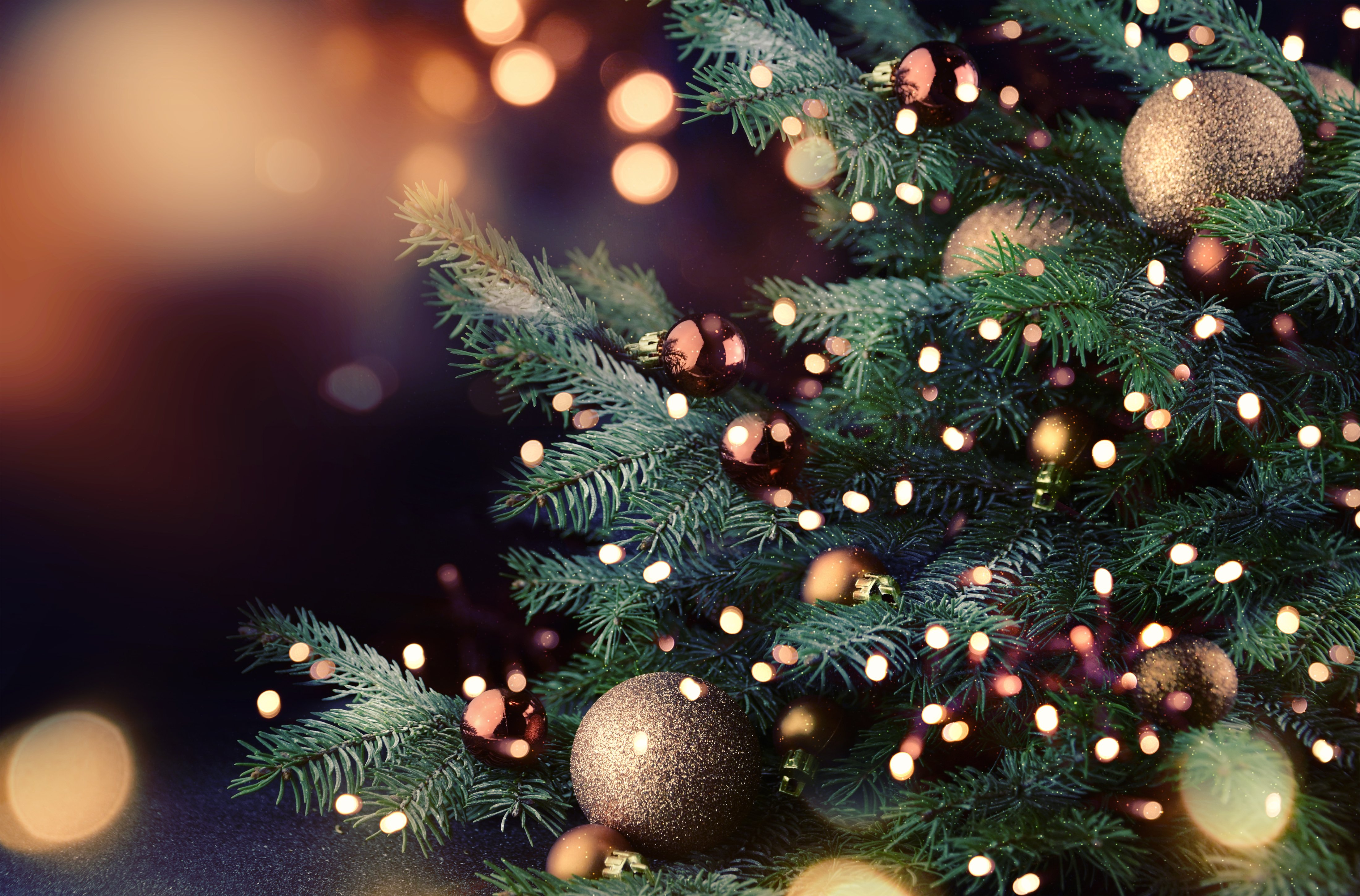 Christmas Tree with lights | Photo: Shutterstock