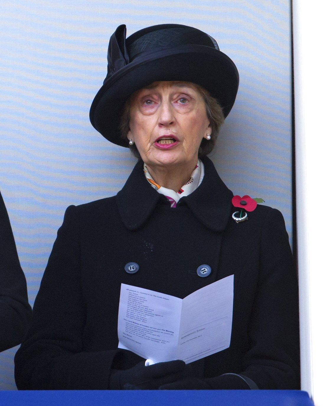 Lady Susan Hussey attends the annual Remembrance Sunday Service at the Cenotaph, Whitehall on November 11, 2012 in London, England | Photo: Getty Images