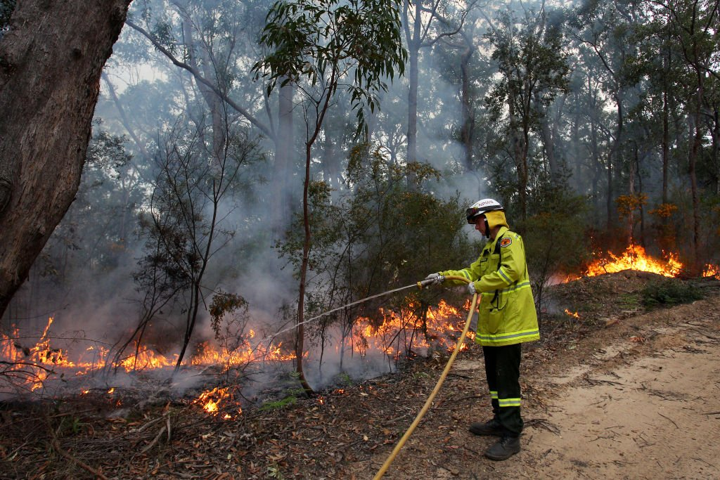 A firefighter working on a wildfire scene on September 04, 2020 in Sydney, Australia | Photo: Getty Images