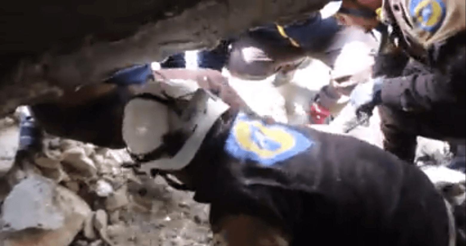 White Helmets filmados apresurándose para remover escombros para rescatar a dos cachorros. Fuente: YouTube / Daily Mail