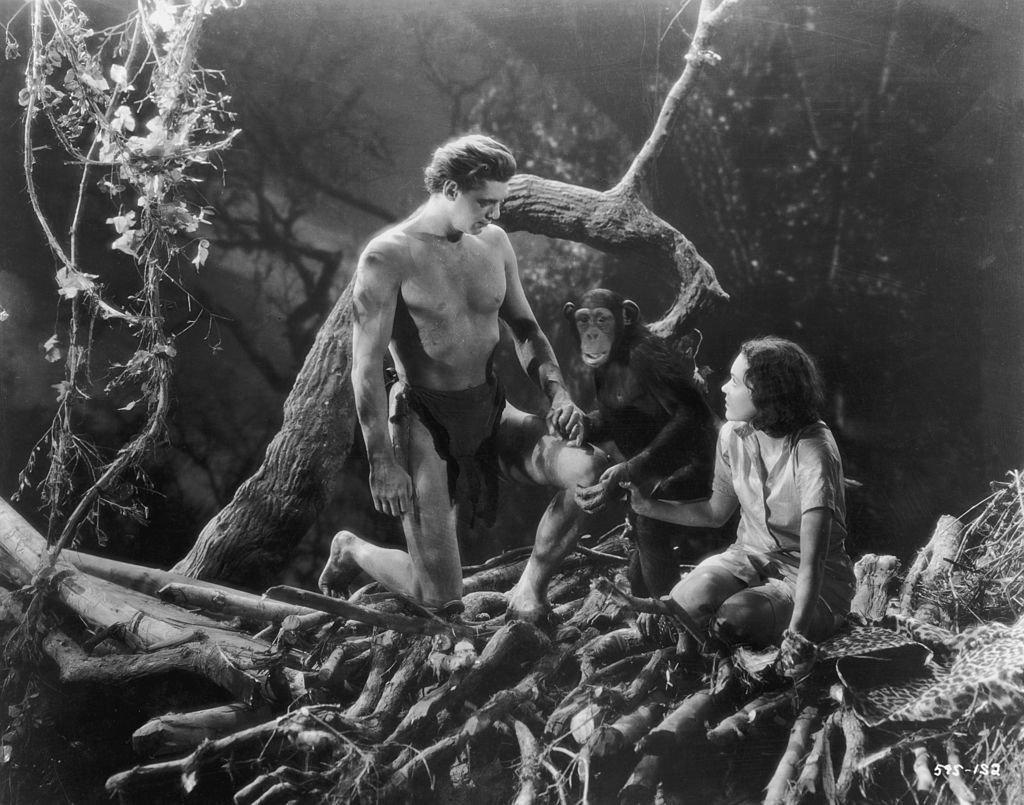 Johnny Weissmuller como Tarzán y Maureen O'Sullivan como Jane, tomados de la mano con 'Cheetah' el chimpancé. | Foto: Getty Images