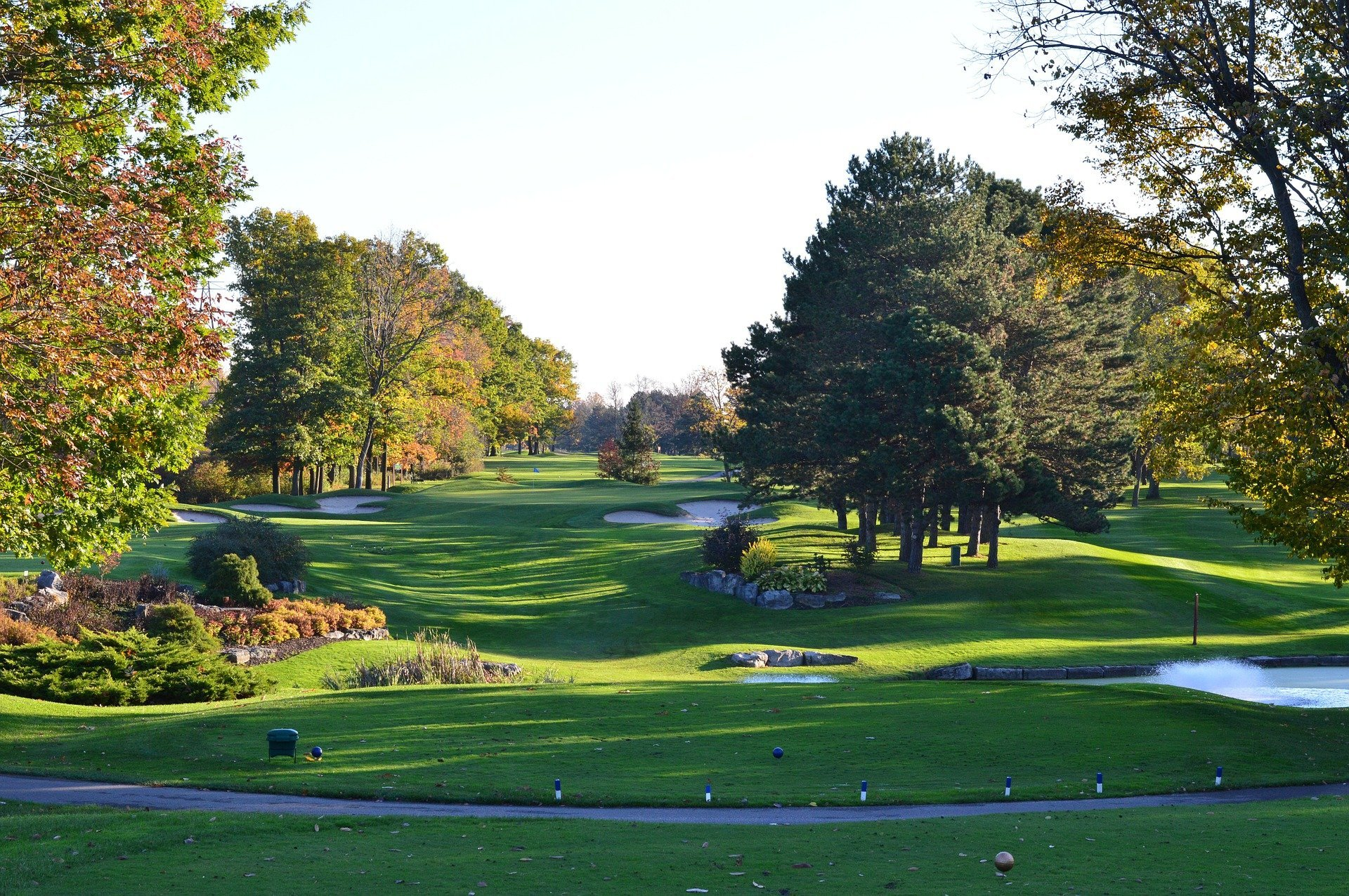 Golfing green. | Source: Pixabay
