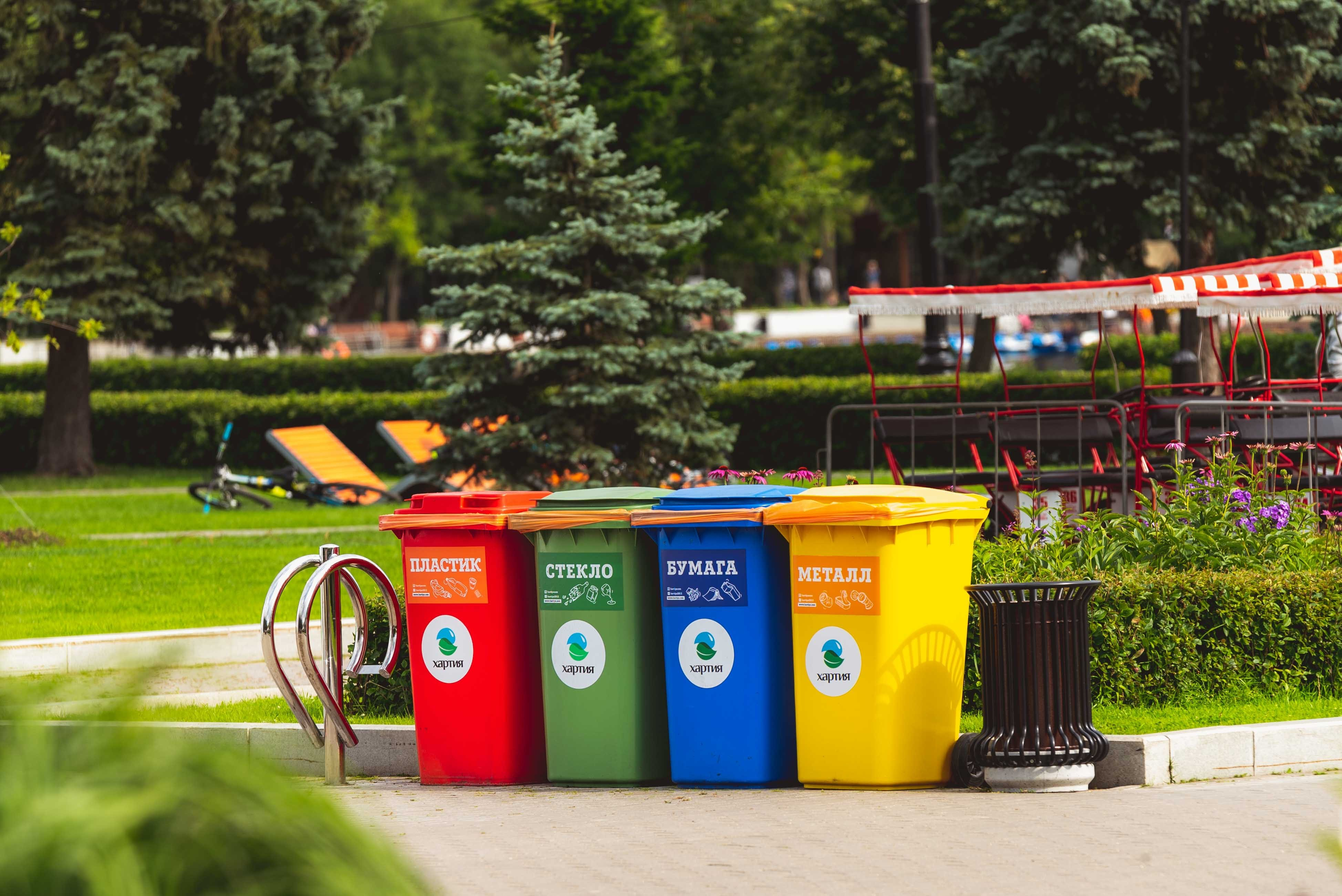 A row of multi color garbage cans, not unlike the one Elia Quezada, 7 hid inside before being dumped in a sanitation truck. | Photo: Pexel.