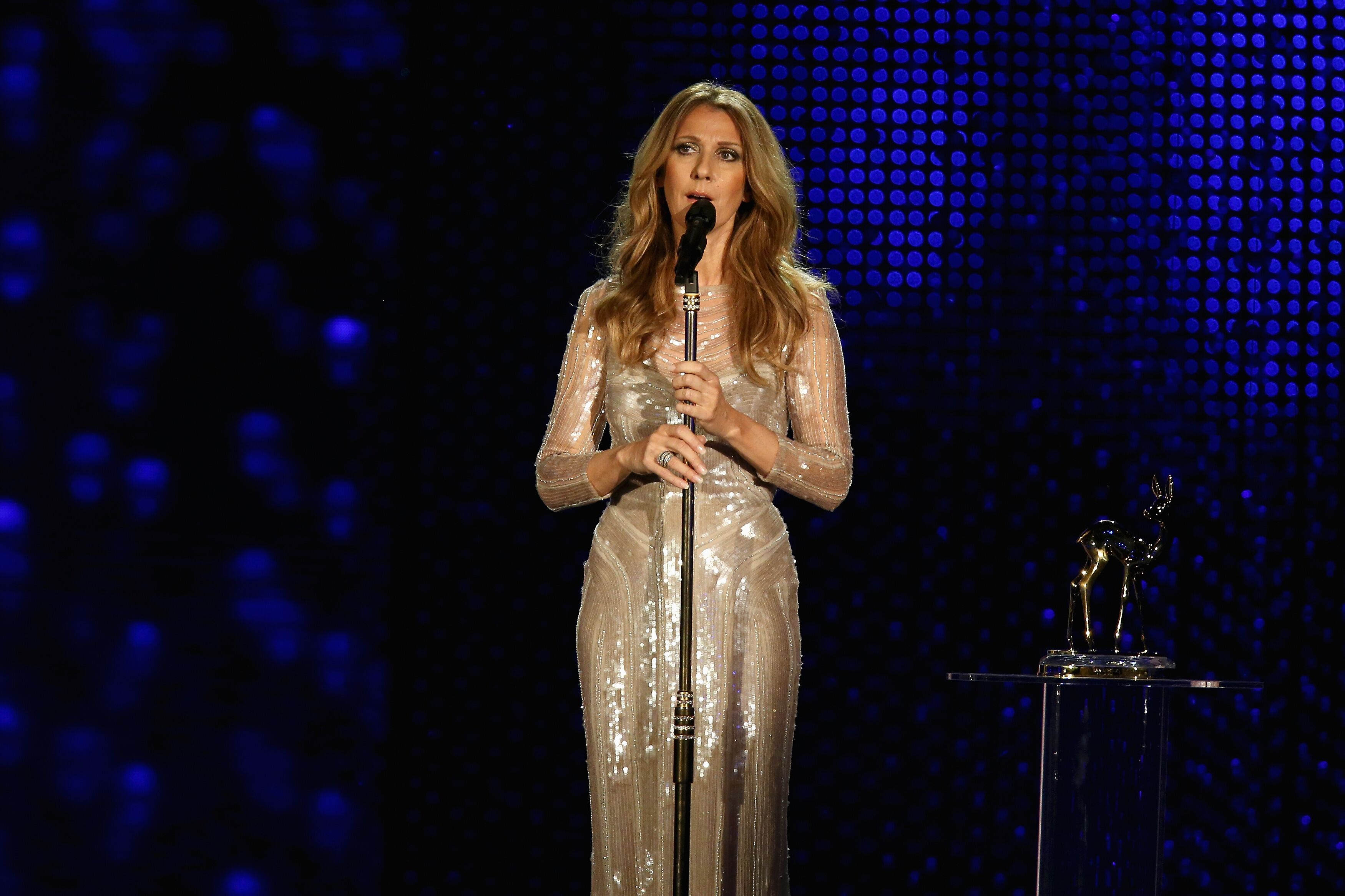 Celine Dion performs during the 'BAMBI Awards 2012' at the Stadthalle Duesseldorf on November 22, 2012 in Duesseldorf, Germany | Photo: Getty Images