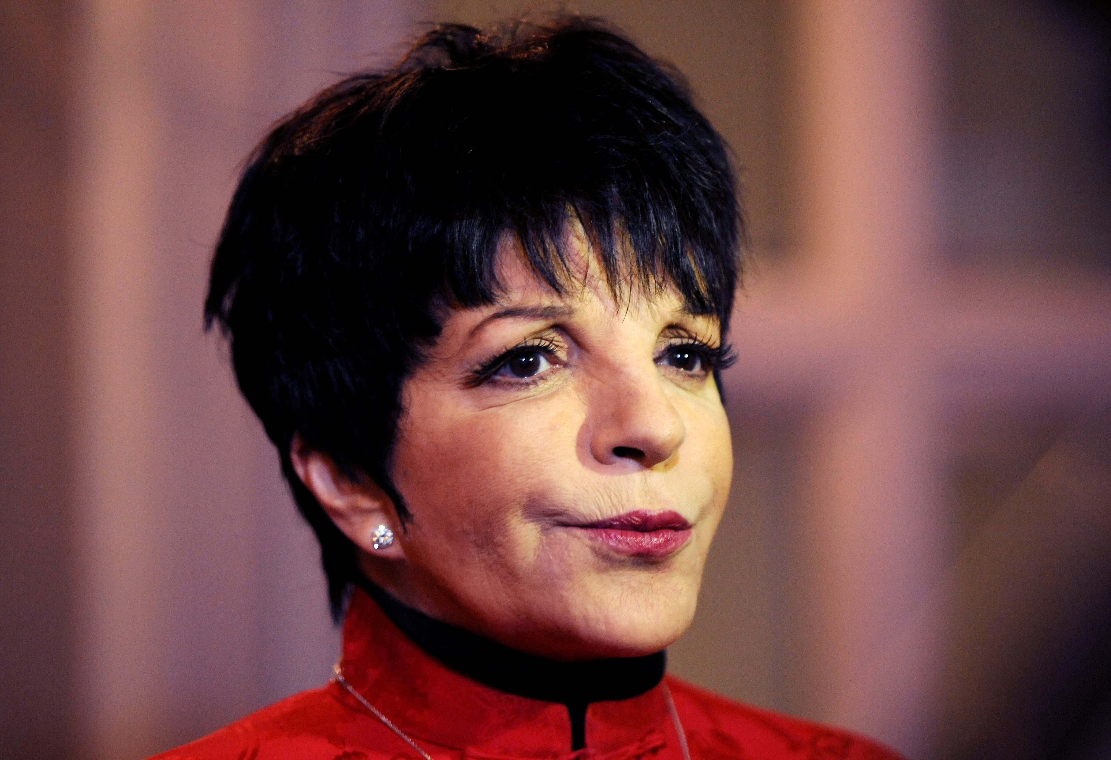 Liza Minnelli at the Nordoff Robbins Silver Clef Awards. | Source: Getty Images