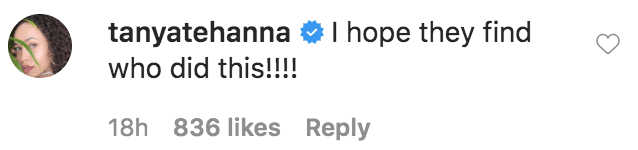 "Tanya Scott commented on Terra Jole's tribute following the death of Ashley ""Minnie"" Ross 
