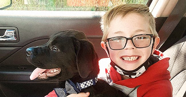 8-Year-Old Virginia Boy Sells Pokémon Cards to Save His Puppy from Deadly Disease