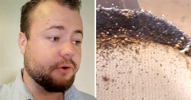 Exterminator shows viewers a bug-infected couch that someone was allegedly trying to donate   Photo: TikTok/exterminatorking