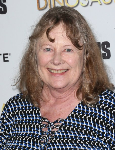 Shirley Knight at the DGA Theater on August 12, 2014 in Los Angeles, California. | Photo: Getty Images