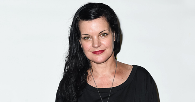 Pauley Perrette: What the Former NCIS Star Is Doing Now