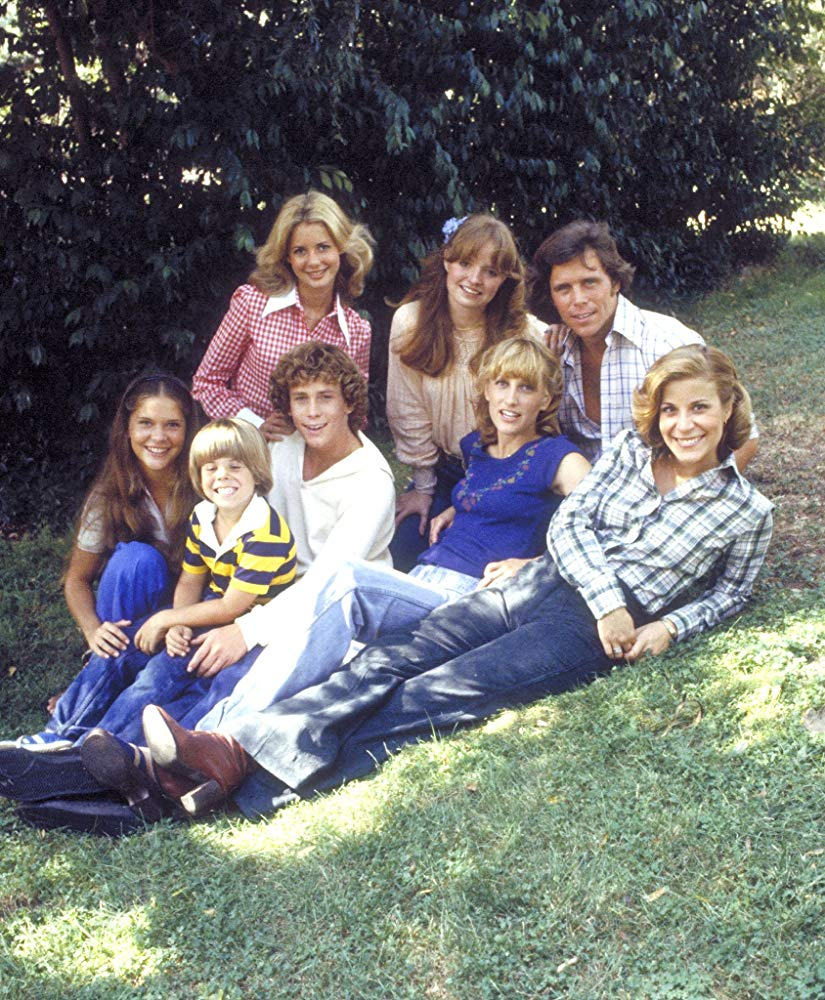 """Willie Aames, Grant Goodeve, Dianne Kay, Connie Needham, Lani O'Grady, Adam Rich, Susan Richardson, and Laurie Walters in """"Eight Is Enough"""" in 1977. 