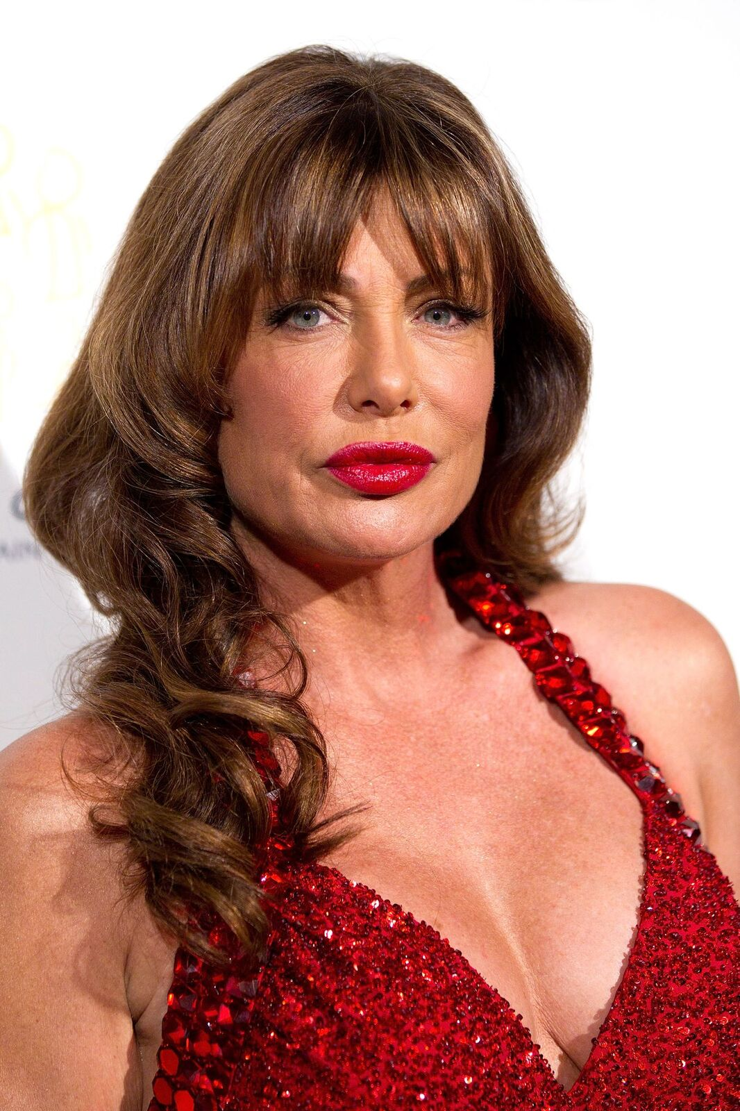 Kelly LeBrock attends the Voices Against Brain Cancer 2011 benefit. | Source: Getty Images