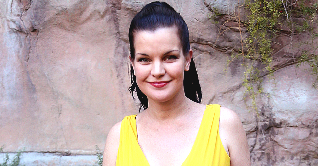 Pauley Perrette of NCIS Shares Her Gratitude & Mentions New Show 'Broke' in a Heartfelt Tweet