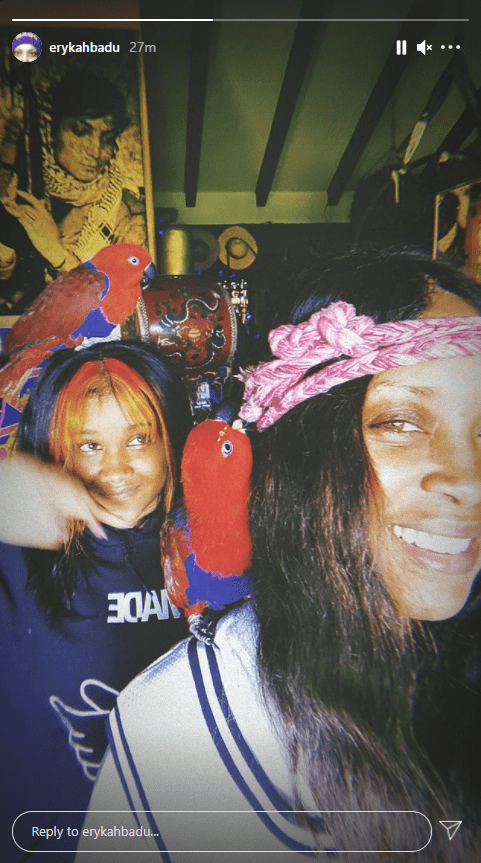 A picture of Erykah Badu and her daughter, Mars Merkaba Thedford as they pose with a parrot on Instagram | Photo: Instagram/erykahbadu