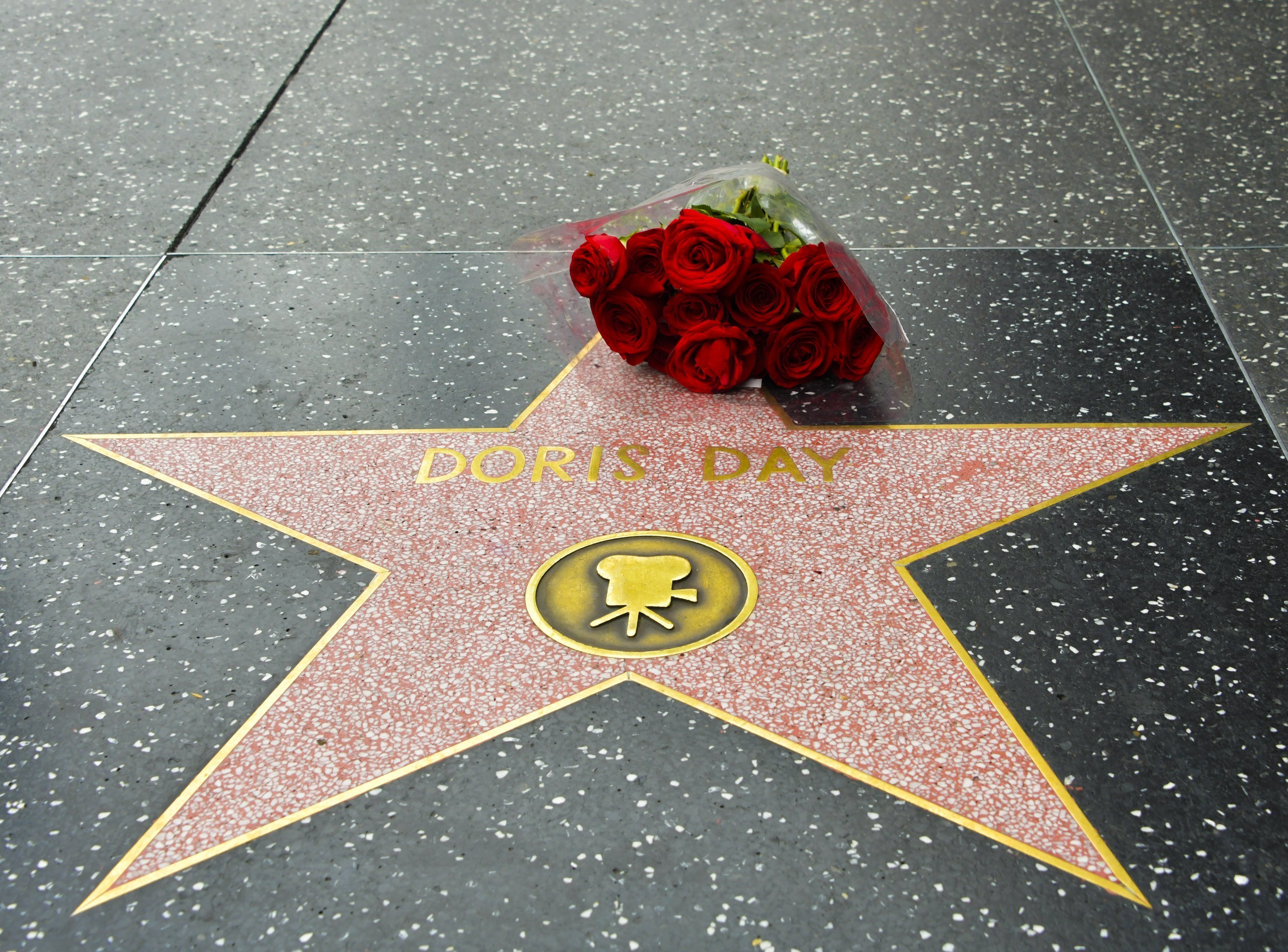 Doris Day Hollywood-Stern | Quelle: Getty Images