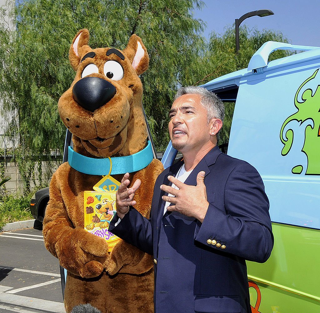 Famous dog whisperer Cesar Millan talks beside cartoon character Scooby-doo, during his 40th birthday celebration in 2009 at an animal shelter in California. | Photo: Getty Images