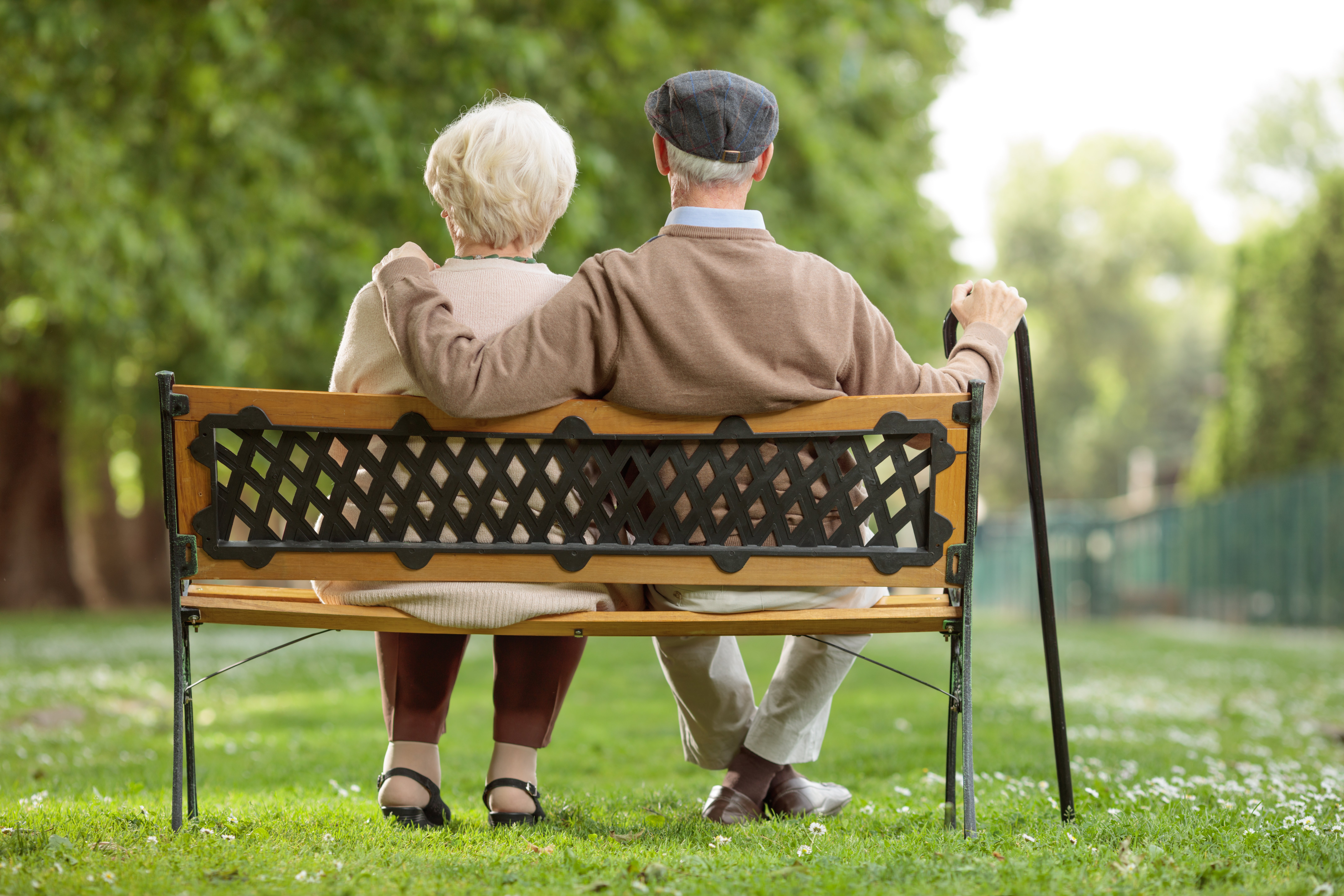 Rear view shot of a senior couple sitting on a wooden bench in the park | Photo: Shutterstock.com