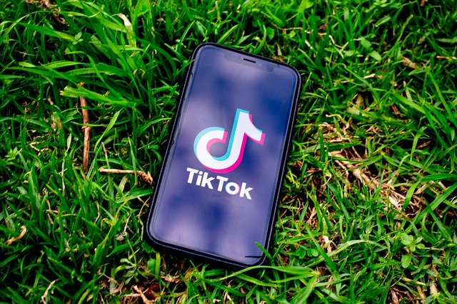 The TikTok logo on a phone laying in the grass | Photo: Pixabay