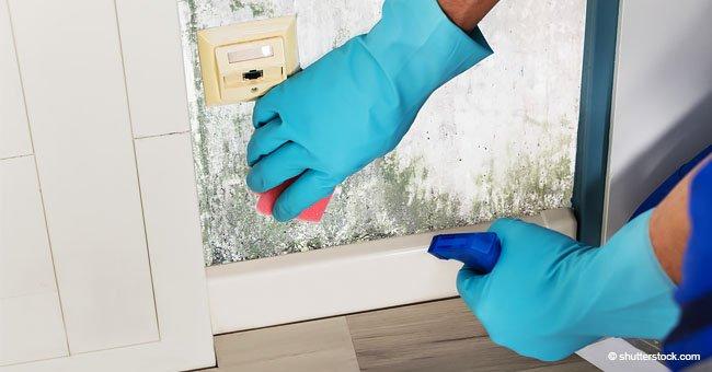 4 trucos fáciles para limpiar las molestas manchas de humedad en tus paredes