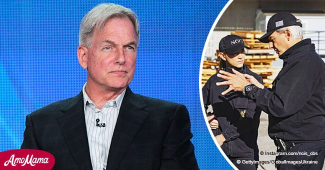 'NCIS' fans express their anger after CBS temporarily replaced it with a 'stupid reality show'