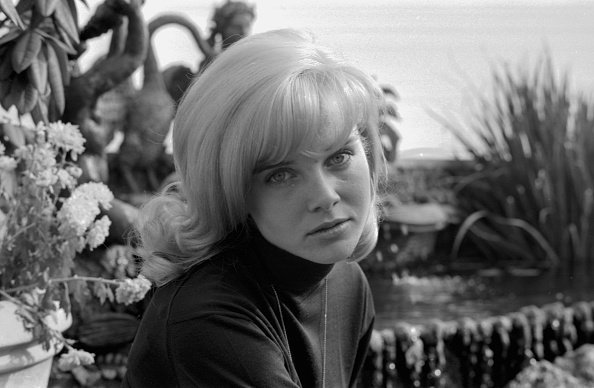 Portrait de l'actrice Sue Lyon à l'hôtel Dorchester de Londres, le 5 octobre 1964. | Photo : Getty Images