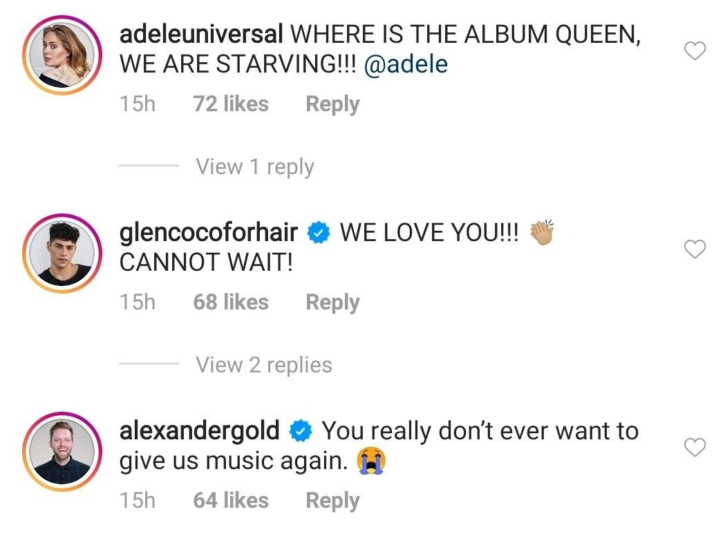 Fans' and celebrities' comments under an Instagram post made by Adele. | Photo: Instagram/adele