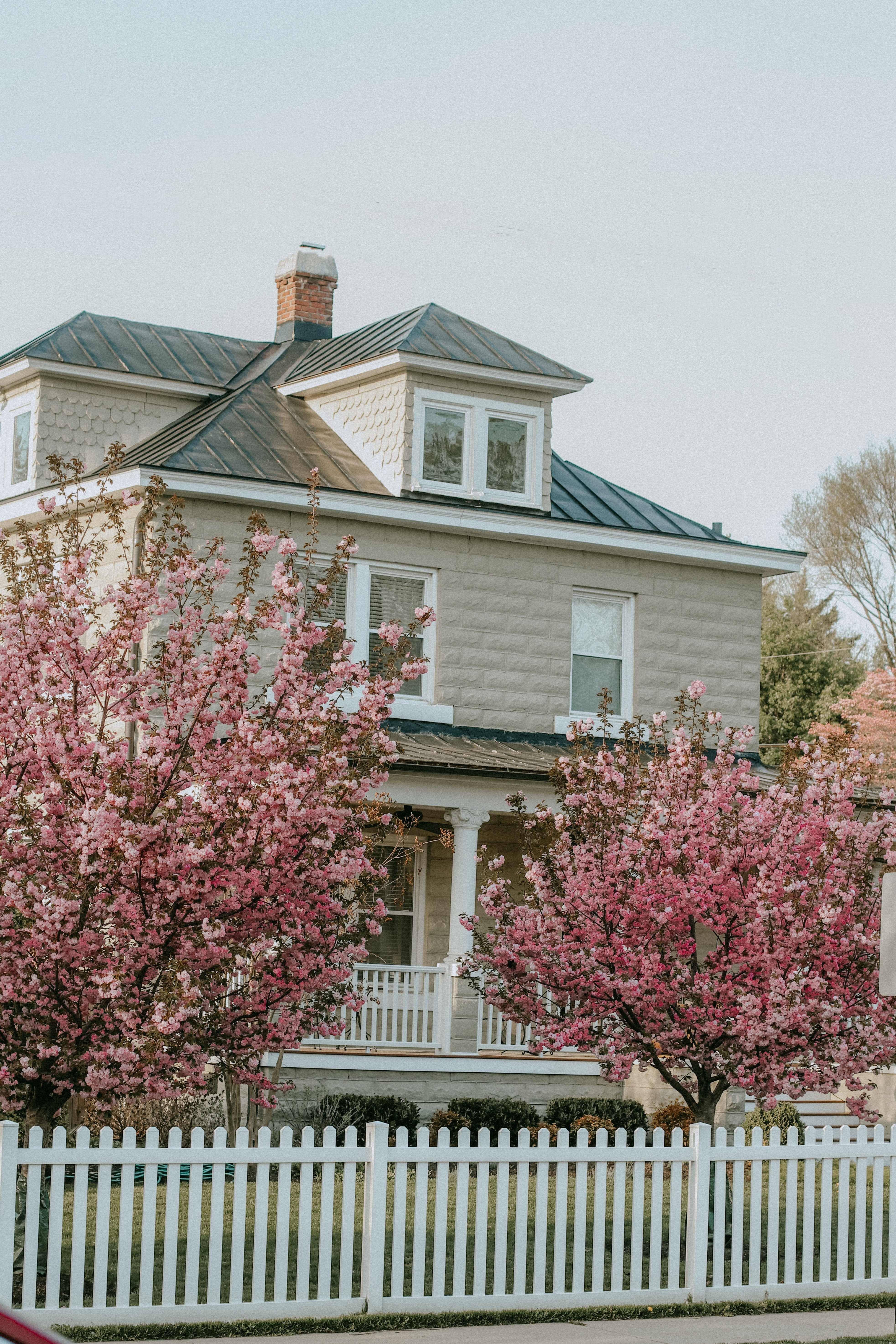 Back in Virginia—such a lovely place compared to Eastern Europe | Source: Pexels