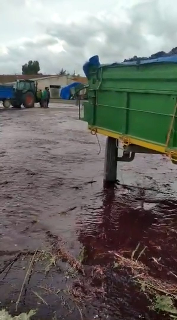 50,000 liters of red wine flooding the area after the bursting of a tank owned by Vitivinos winery in Albacete Spain | Photo: Twitter/Radio Albacete