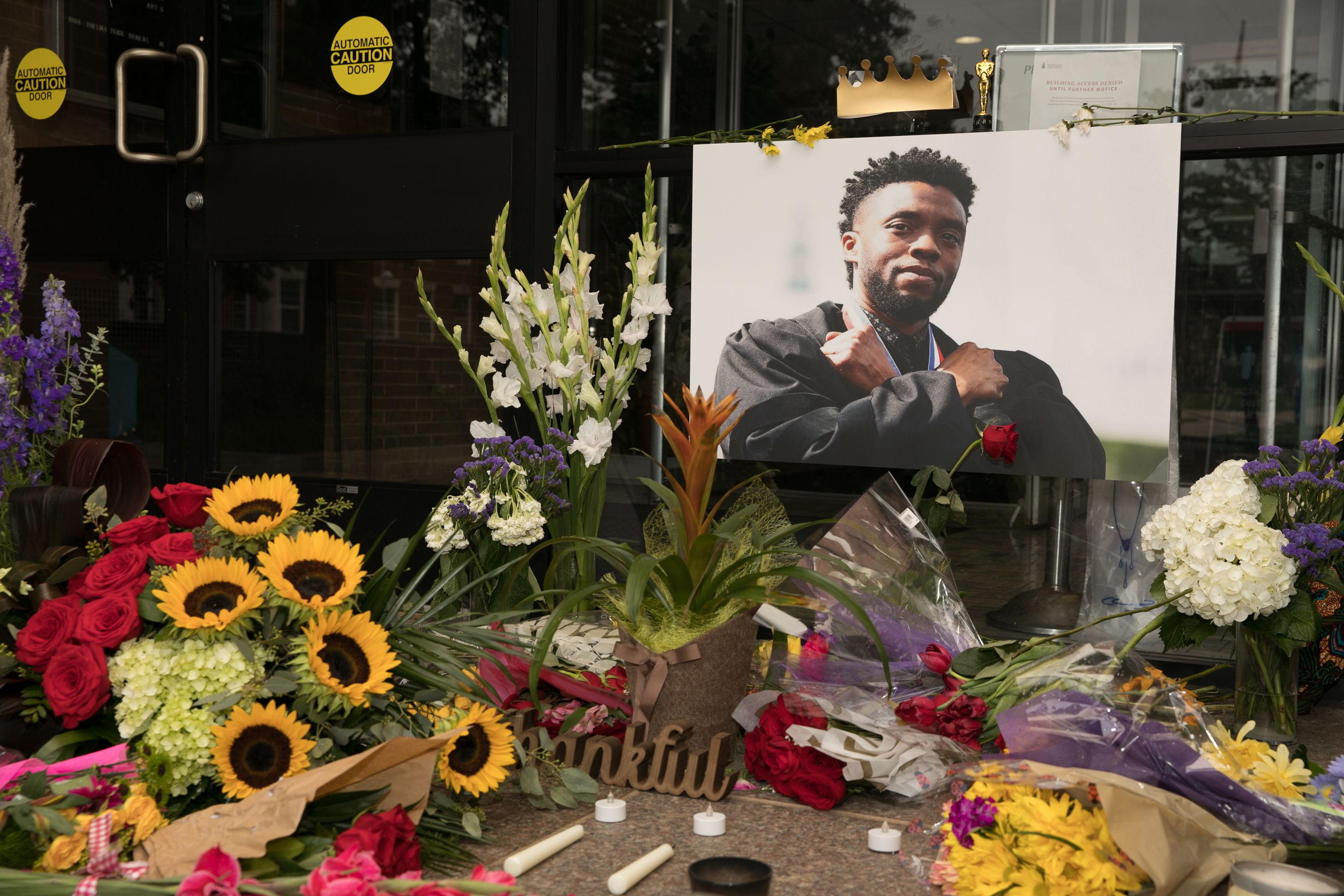 Tribute to Chadwick Boseman at Howard University on August 31, 2020 in Washington, DC   Source: Getty Images
