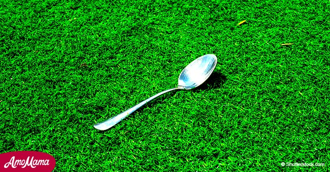 Voici pourquoi certaines personnes mettent une cuillère de sucre dans leur jardin avant de quitter la maison