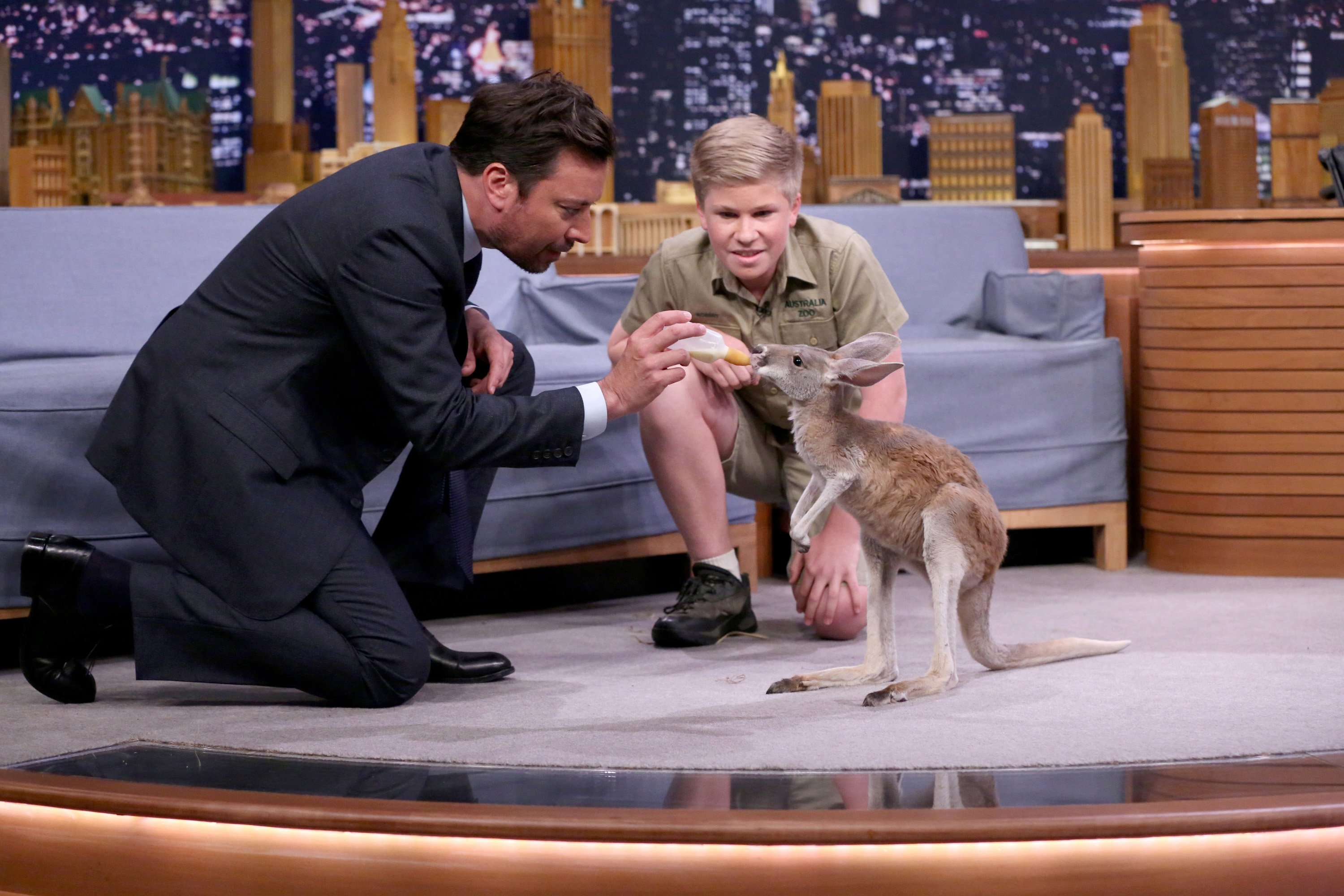 Animal expert Robert Irwin with host Jimmy Fallon during an interview with on June 7, 2017| Photo: Getty images