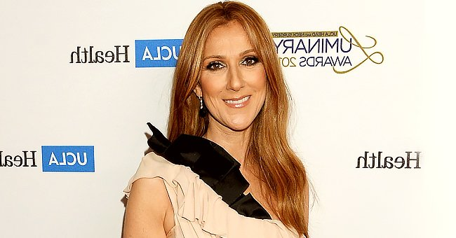 Closer Look at Celine Dion's Former Lavish Mansion Sold for $38.5 Million That Had a Water Park