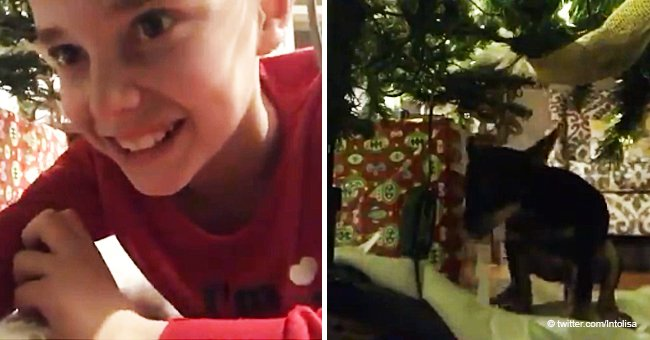 Boy tries to catch Santa on video, but his dog makes him a hilarious surprise (Video)