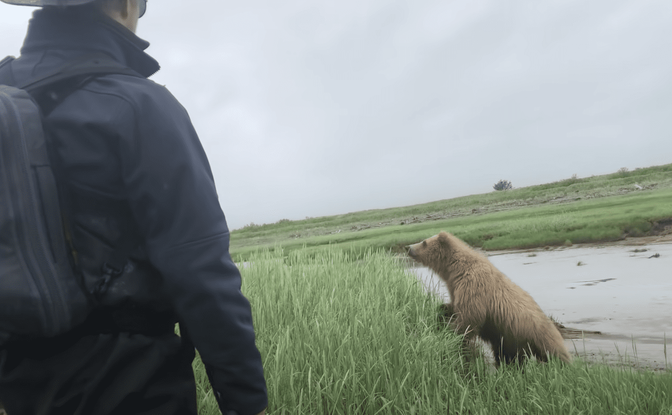 Bear slowly approaches a group of people exploring the area | Photo: Youtube/The Bear Necessities