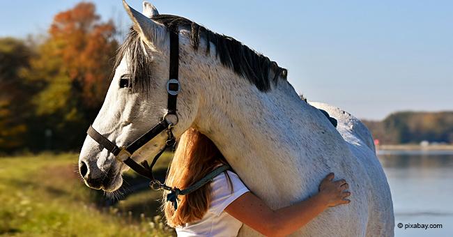 Incident mortel en Belgique: une fillette de 14 ans meurt traînée par son cheval