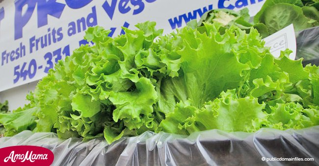 CDC warns people to stop eating romaine lettuce due to several incidents of contamination