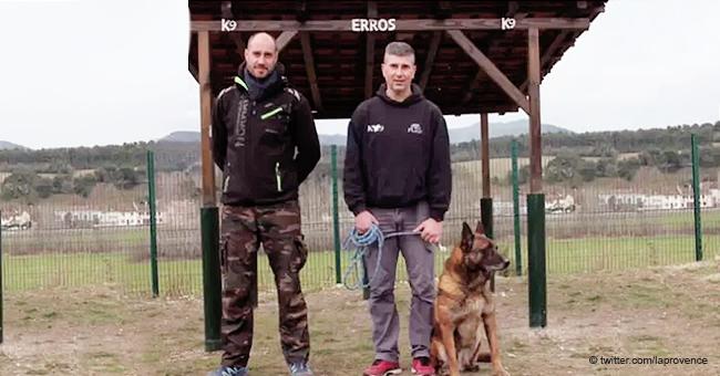 """Deux policiers ont lancé une cagnotte en ligne pour construire une """"maison de retraite"""" pour les chiens de police"""