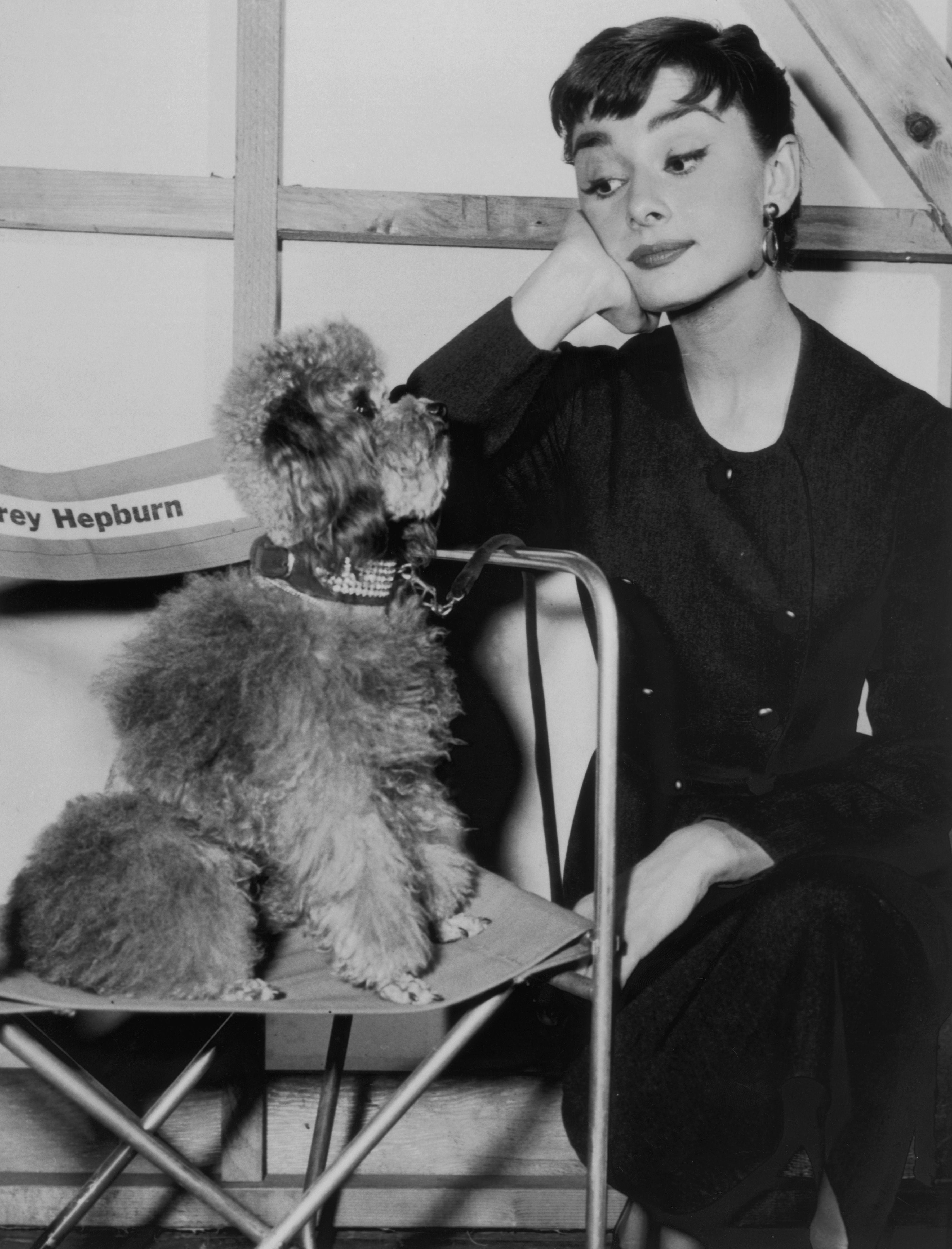 Audrey Hepburn on set with her pet dog, Mr Famous, circa 1960   Source: Getty Images