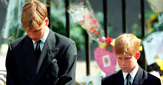 Prince Harry and Prince William Were Told Not to Cry – Look Back at Princess Diana's Funeral