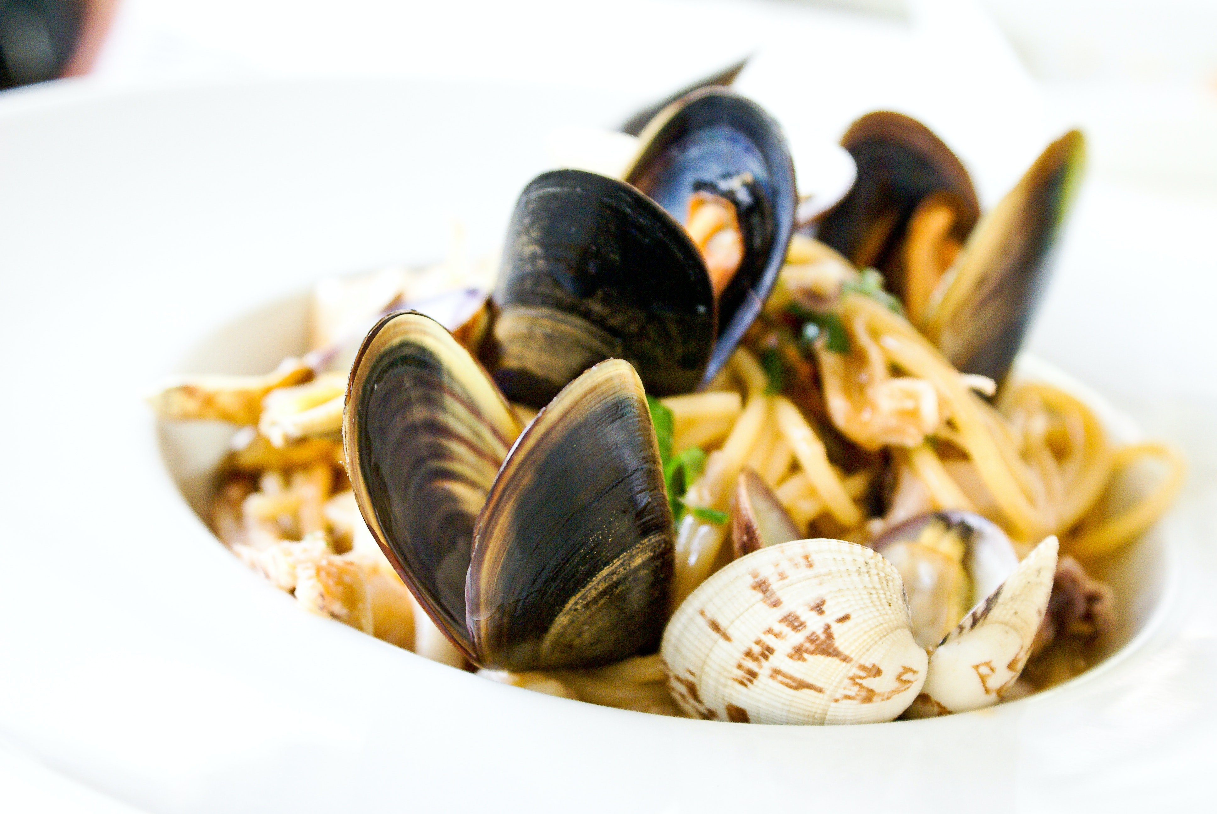 A dish of mussels.   Pexels