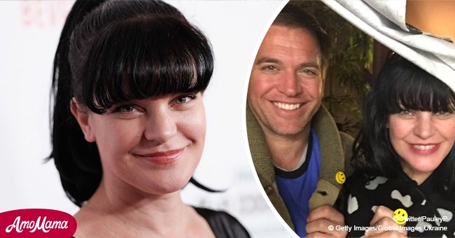Pauley Perrette publicly supports 'NCIS' ex-star amid new sexual harassment accusations