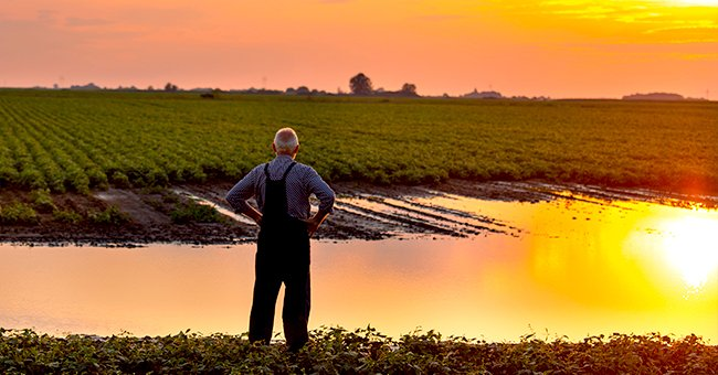 Daily Joke: An Old Farmer Went to a Pond